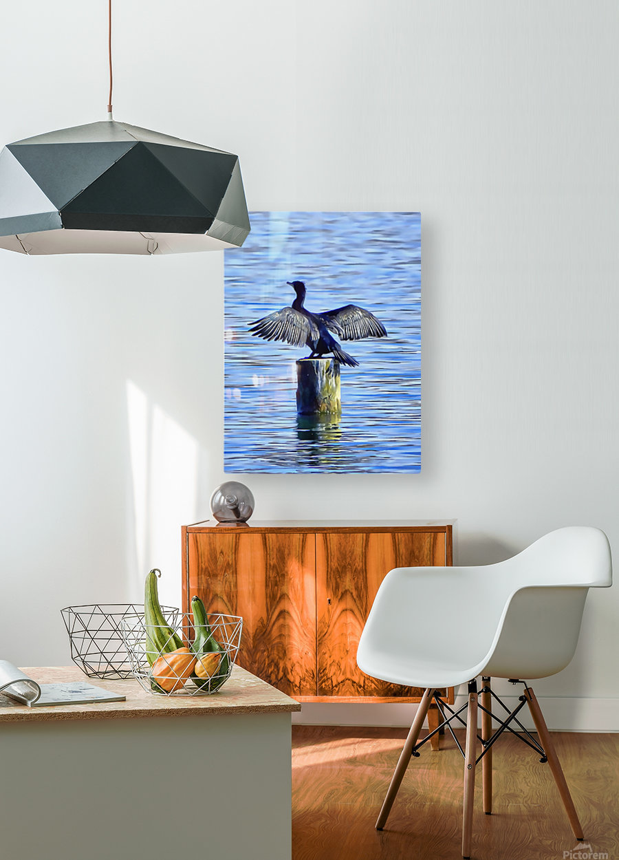 Cormorant Drying  His Wings  HD Metal print with Floating Frame on Back