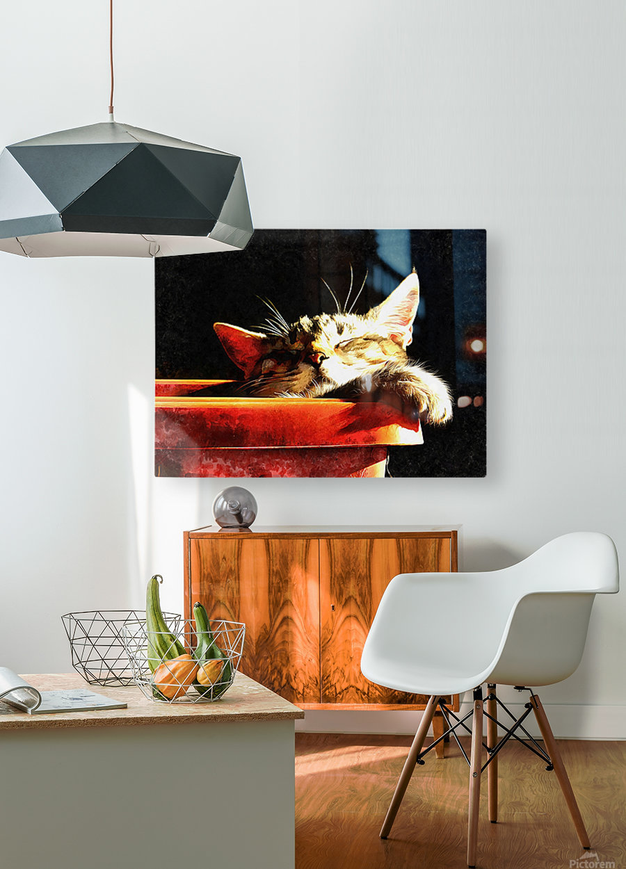 Wake Me When It Is Dinner Time  HD Metal print with Floating Frame on Back