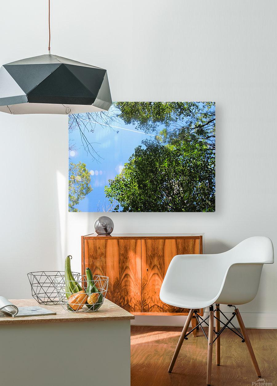 Landscape (200)  HD Metal print with Floating Frame on Back