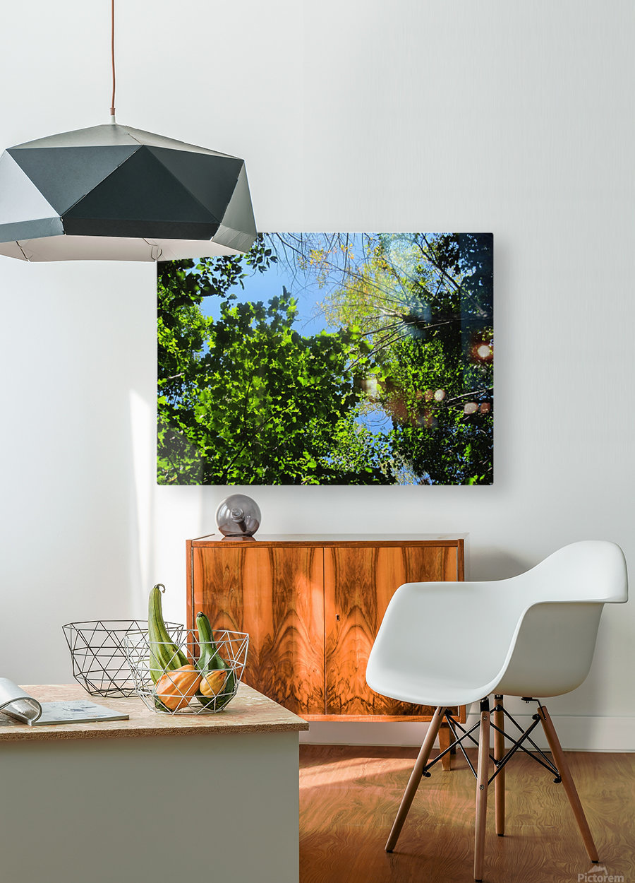 Landscape (181)  HD Metal print with Floating Frame on Back