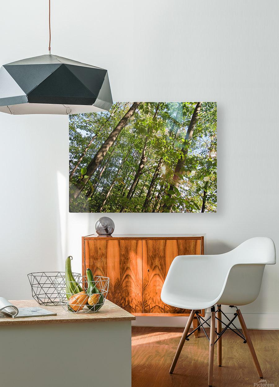 Landscape (108)  HD Metal print with Floating Frame on Back