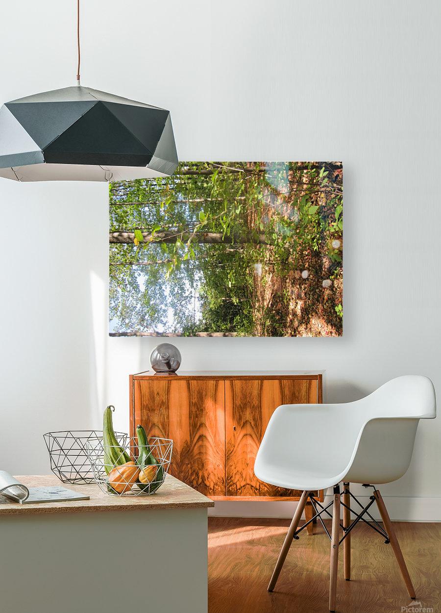 Landscape (105)  HD Metal print with Floating Frame on Back