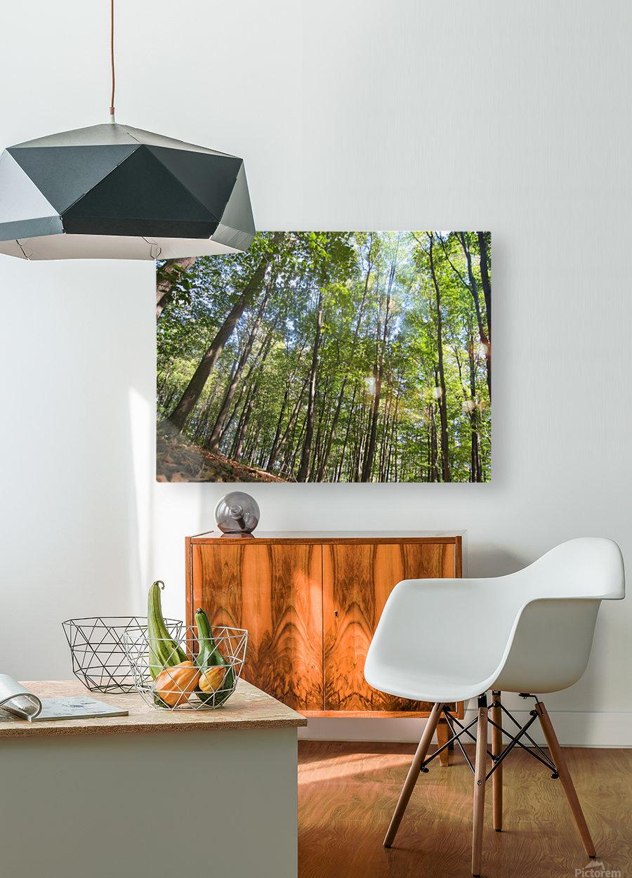 Landscape (249)  HD Metal print with Floating Frame on Back