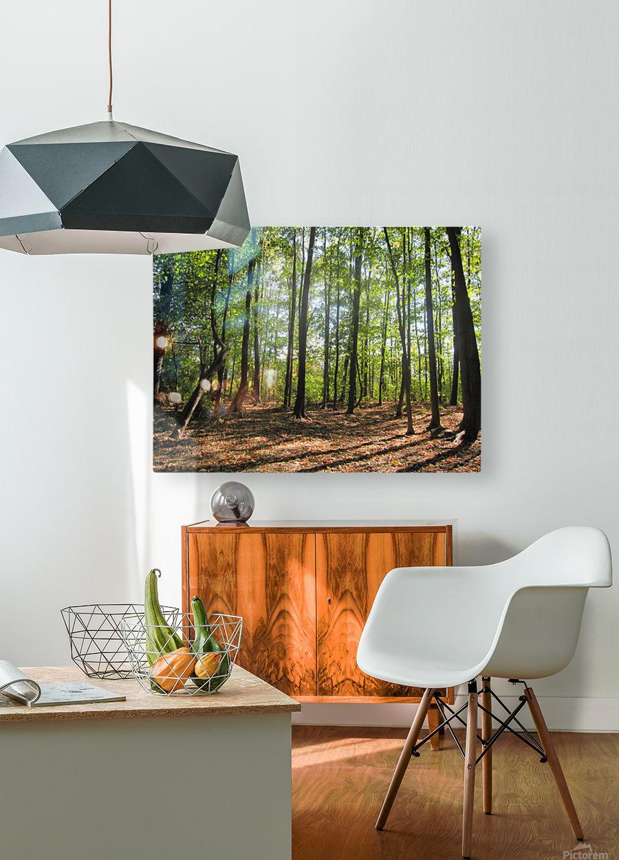 Landscape (37)  HD Metal print with Floating Frame on Back