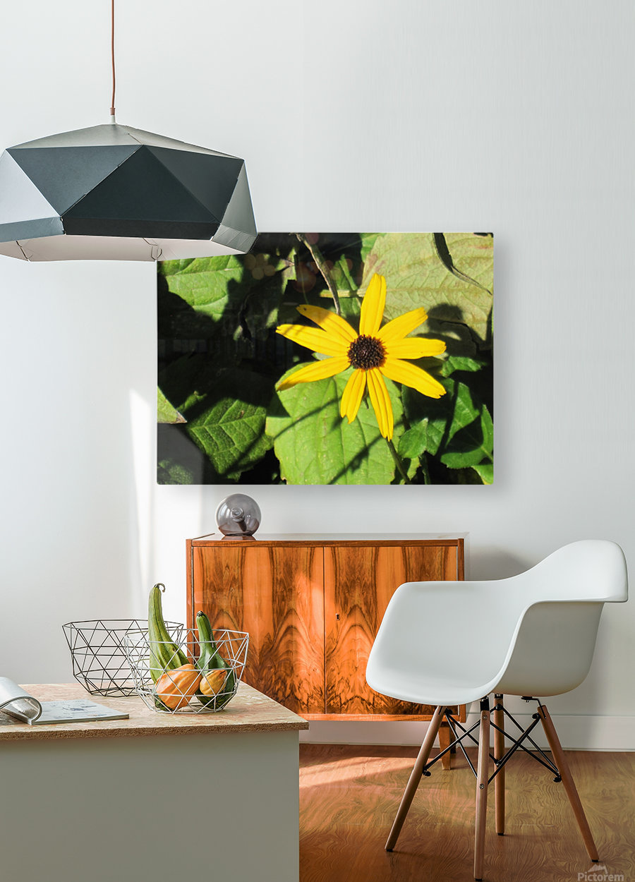 Flowers (62)  HD Metal print with Floating Frame on Back