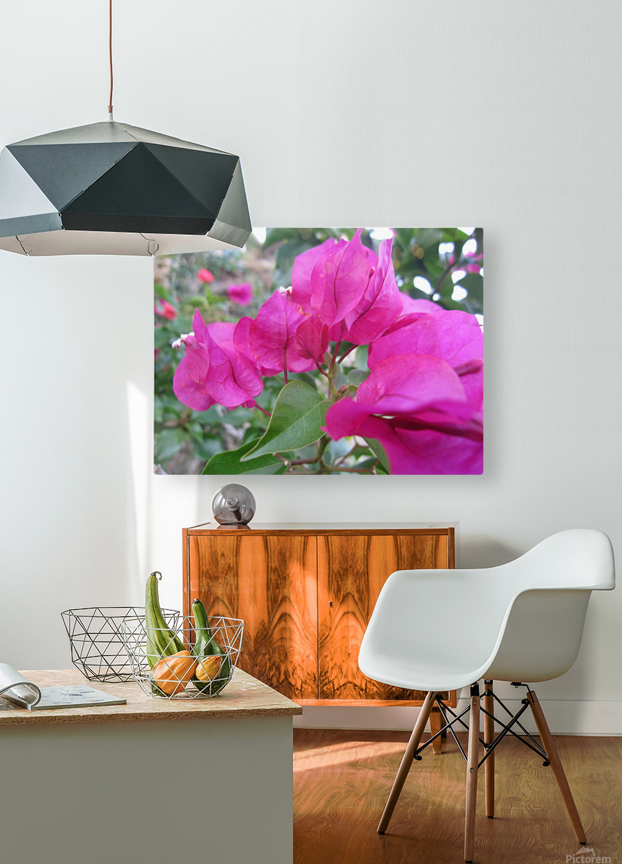 Flowers (47)  HD Metal print with Floating Frame on Back
