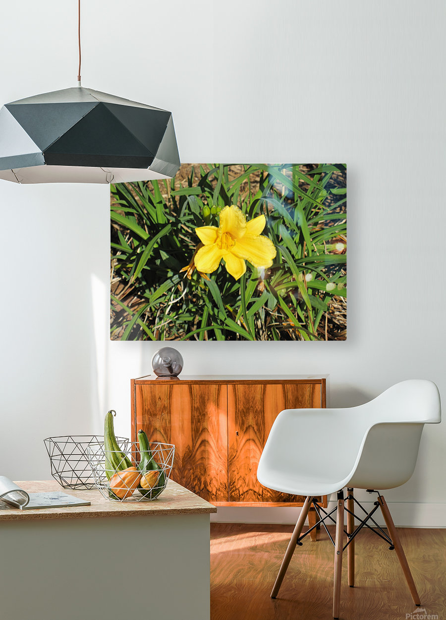 Flowers (35)  HD Metal print with Floating Frame on Back