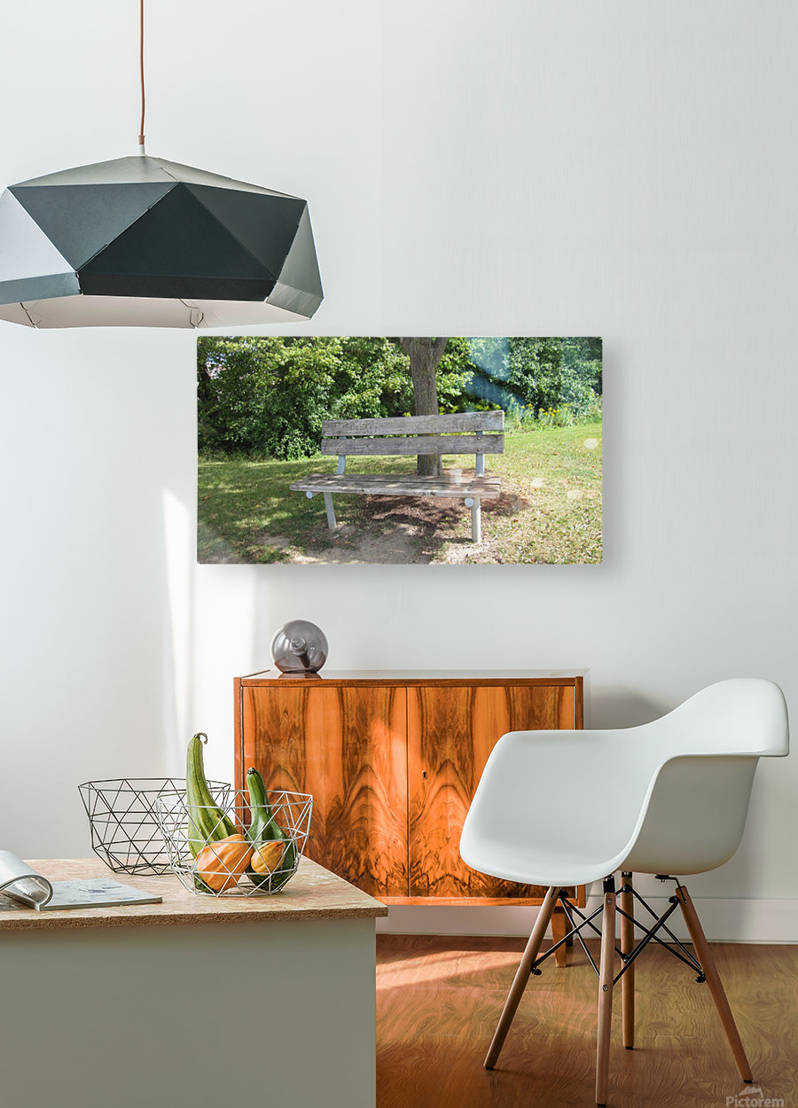 Bench (10)  HD Metal print with Floating Frame on Back