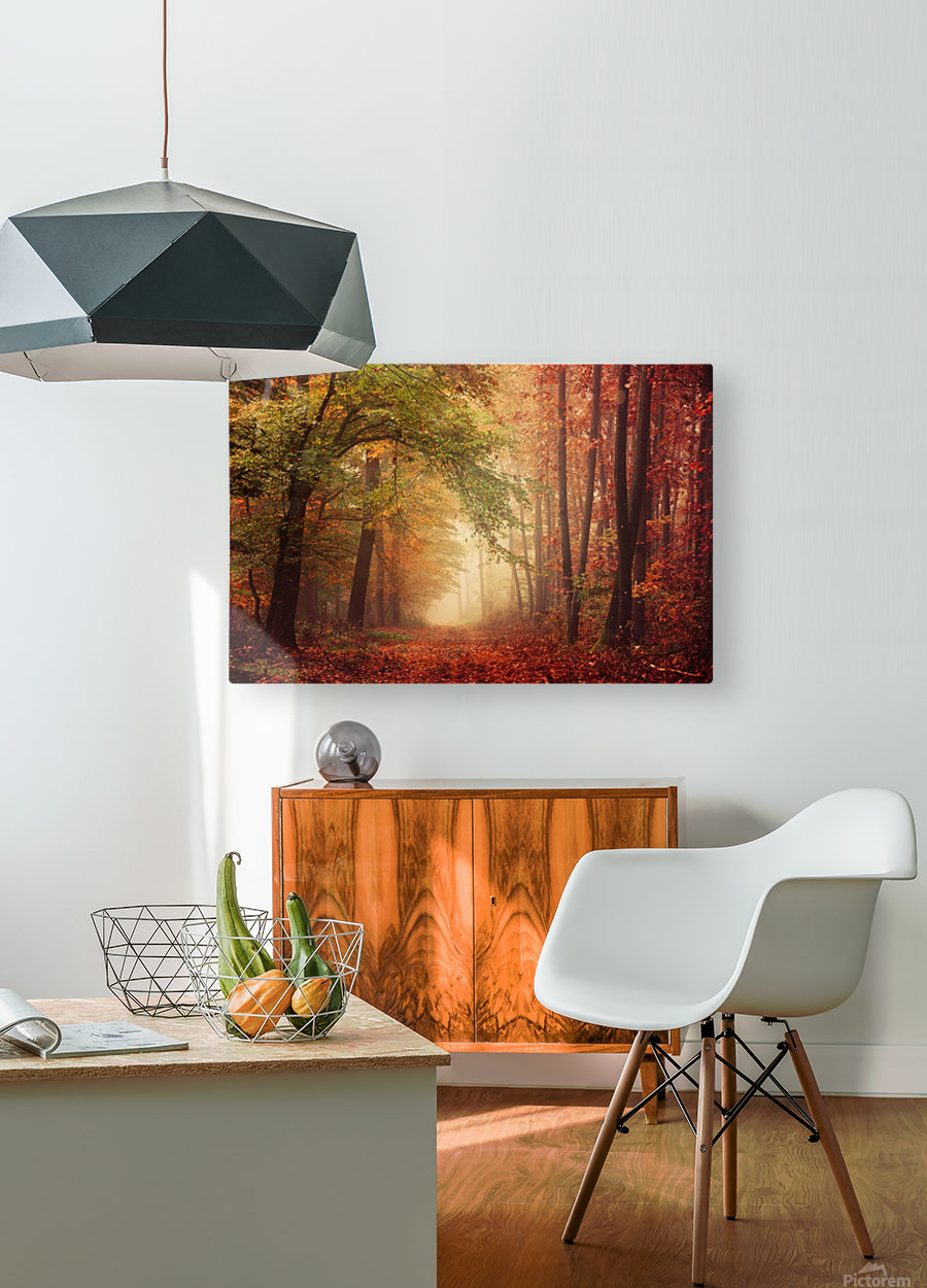Colorful autumn forest  HD Metal print with Floating Frame on Back