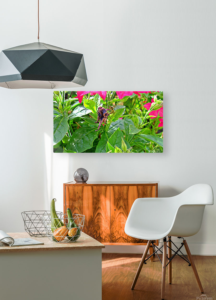Bee (3)  HD Metal print with Floating Frame on Back