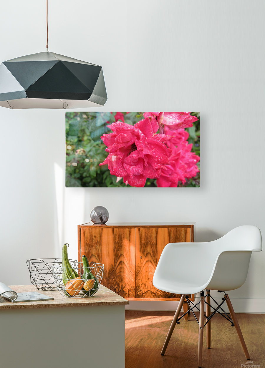 Flower (9)  HD Metal print with Floating Frame on Back