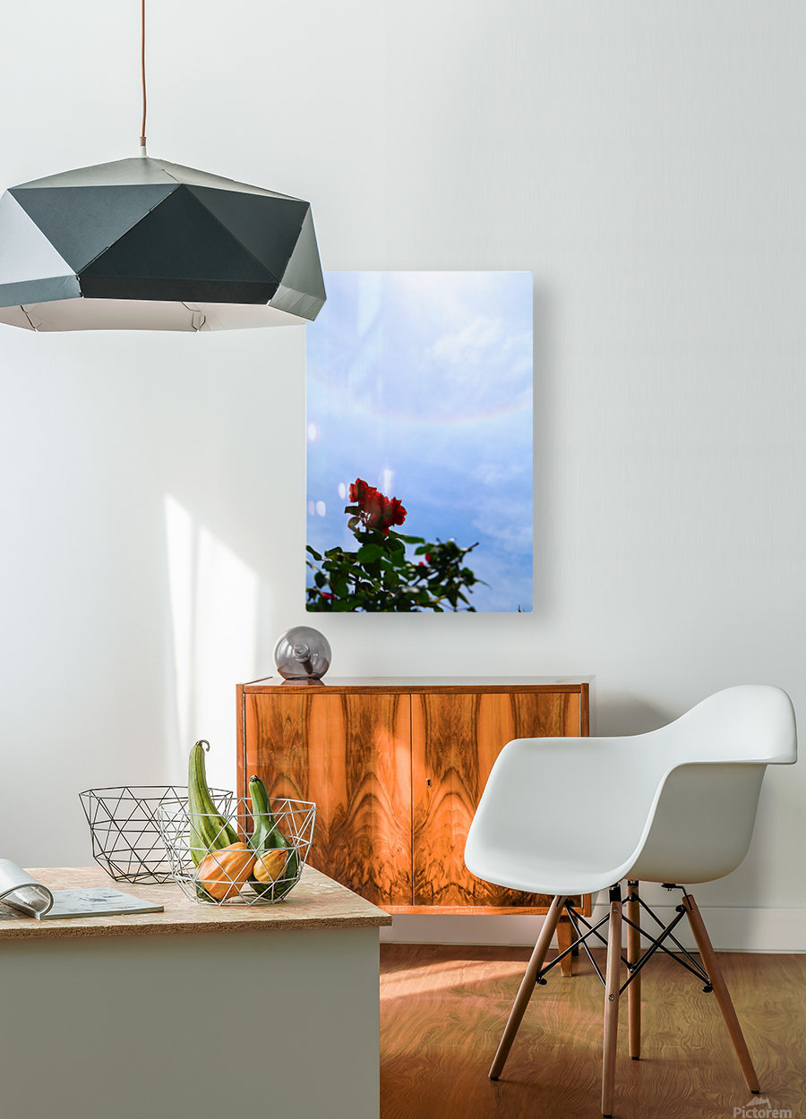 Blooming  HD Metal print with Floating Frame on Back
