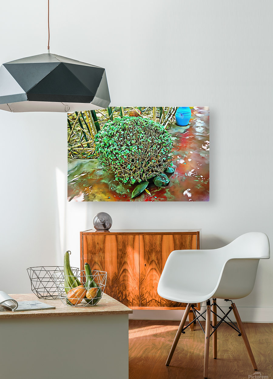 Turtle Pot At Majorelle Gardens  HD Metal print with Floating Frame on Back
