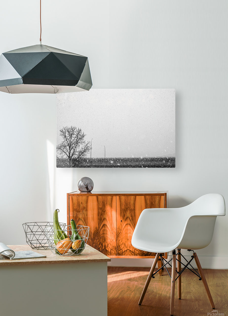 Freeway Snow...  HD Metal print with Floating Frame on Back