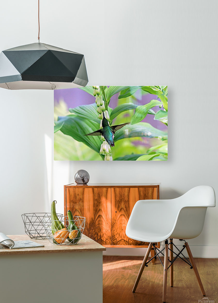 Hummer And Solomon Seal  HD Metal print with Floating Frame on Back