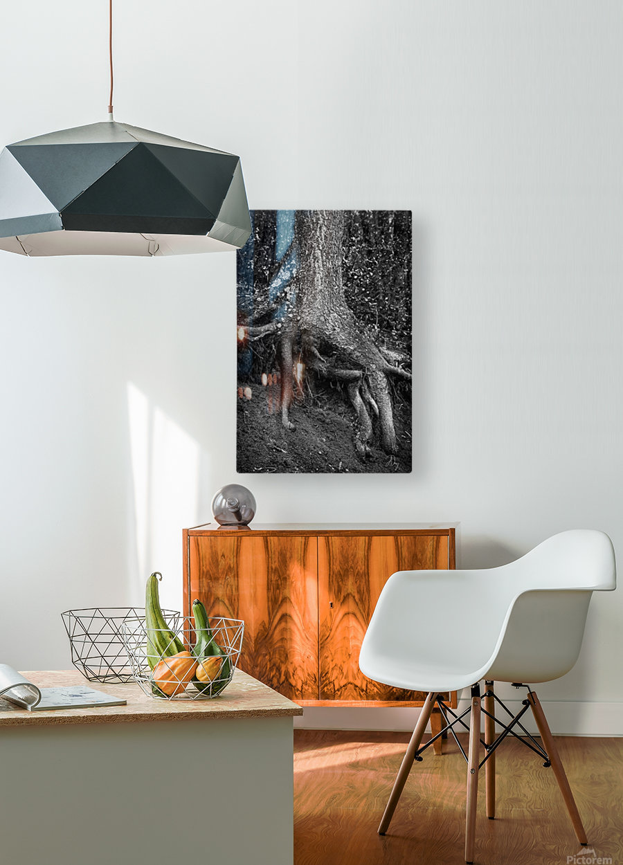 Roots...  HD Metal print with Floating Frame on Back
