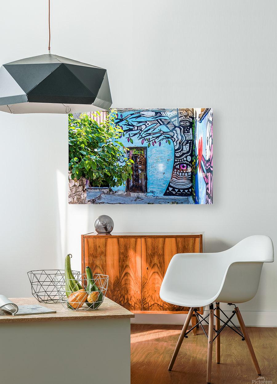 Doors & Windows 4  HD Metal print with Floating Frame on Back
