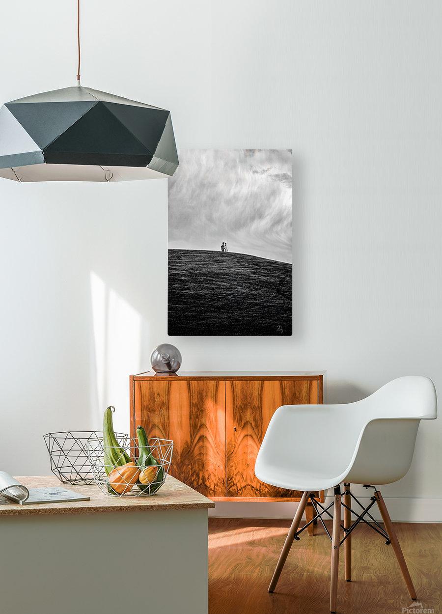 Surveyor...  HD Metal print with Floating Frame on Back