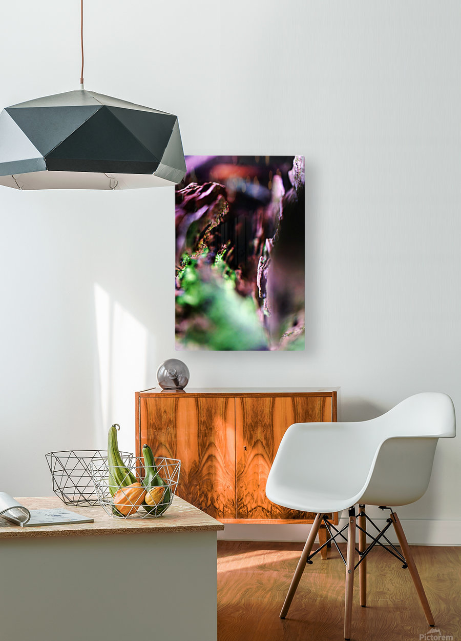 DSC03143  HD Metal print with Floating Frame on Back