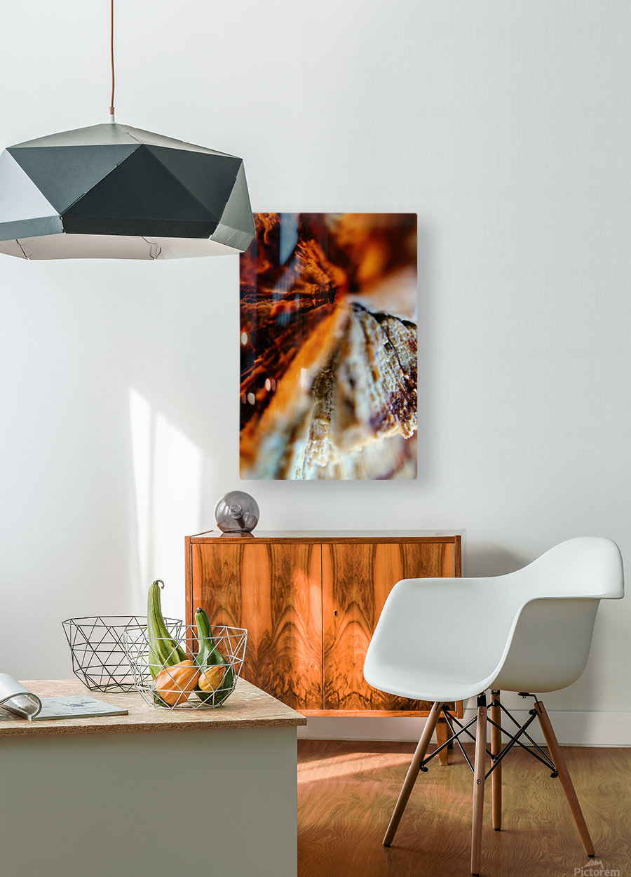 Abstract Macro Nature Photography 110  HD Metal print with Floating Frame on Back