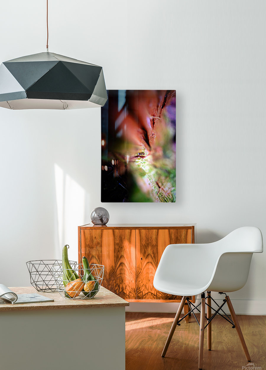 Abstract Macro Nature Photography 84  HD Metal print with Floating Frame on Back