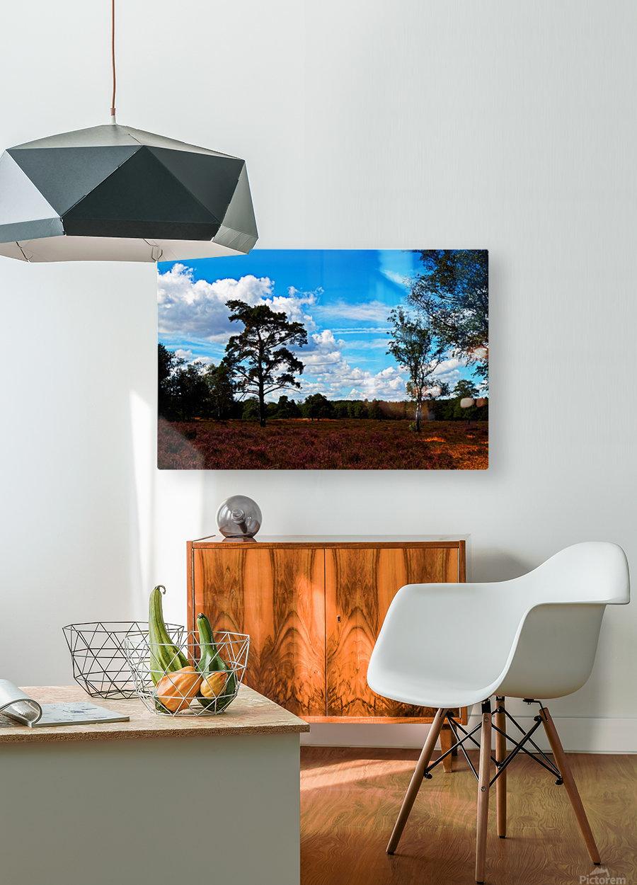 Dunes Landscape 03  HD Metal print with Floating Frame on Back