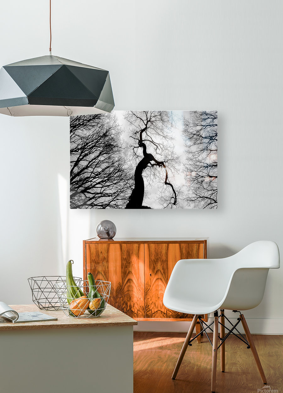 Black and White Abstract Tree 02  HD Metal print with Floating Frame on Back