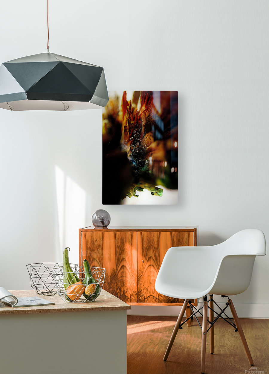Macro Raindrop Photography Art 23  HD Metal print with Floating Frame on Back