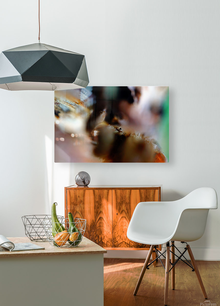 Abstract Macro Nature Photography 22  HD Metal print with Floating Frame on Back