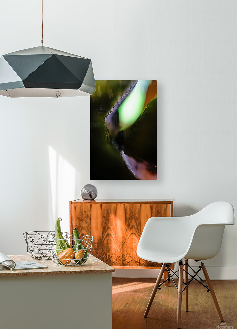 Abstract Macro Nature Photography 09  HD Metal print with Floating Frame on Back