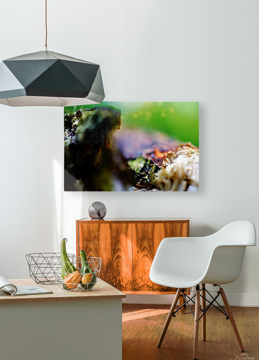 Abstract Macro Nature Photography 08  HD Metal print with Floating Frame on Back