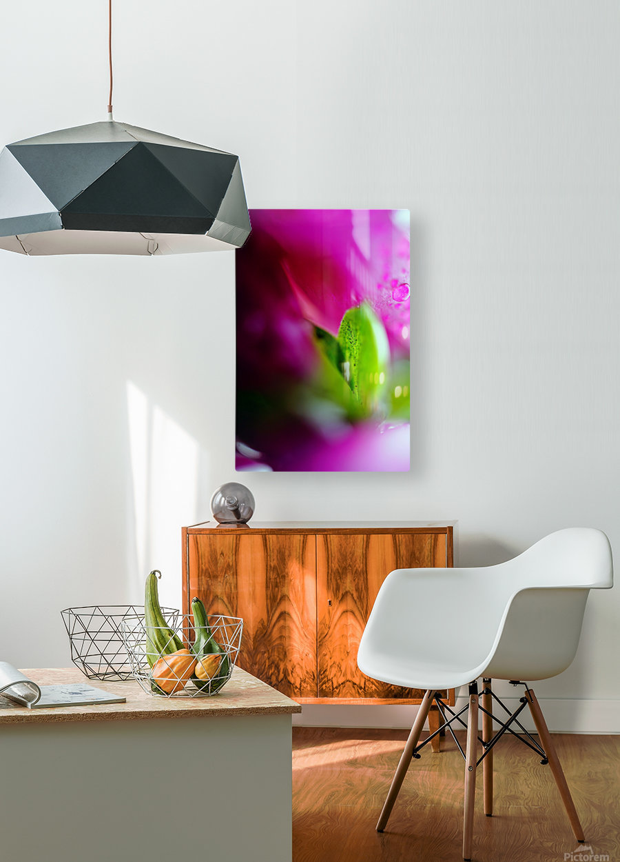 Abstract Macro Pop Colors 01  HD Metal print with Floating Frame on Back