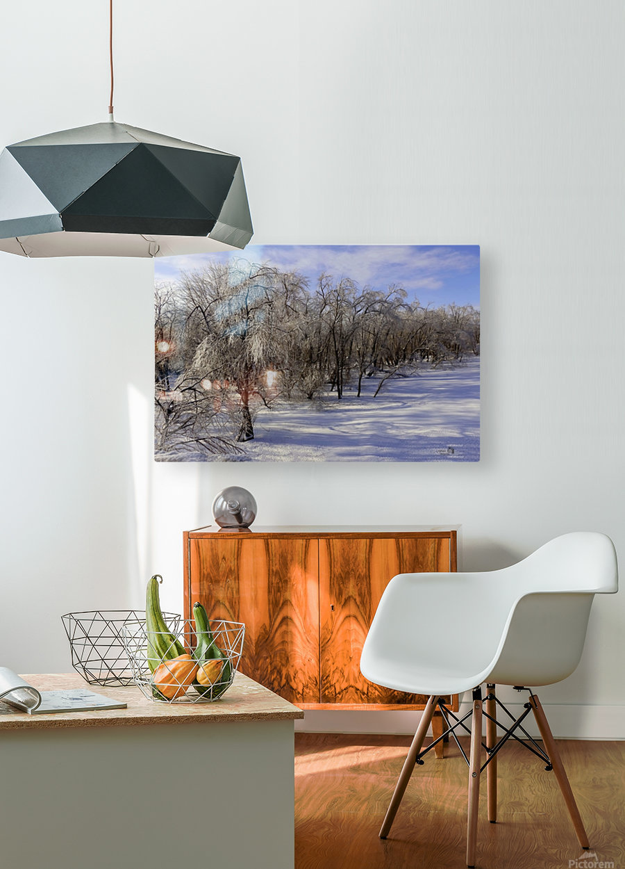 Matin glacé- Iced morning  HD Metal print with Floating Frame on Back