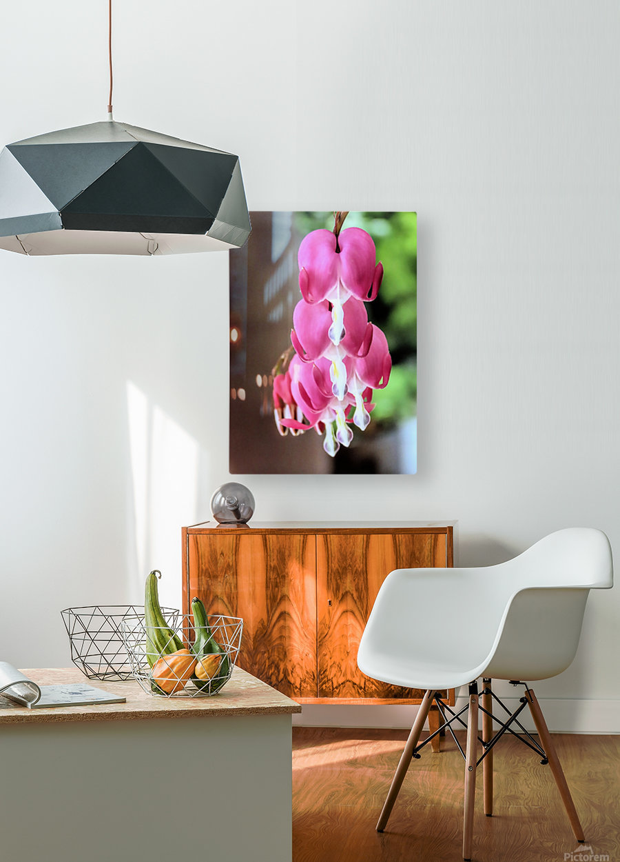 String of hearts  HD Metal print with Floating Frame on Back