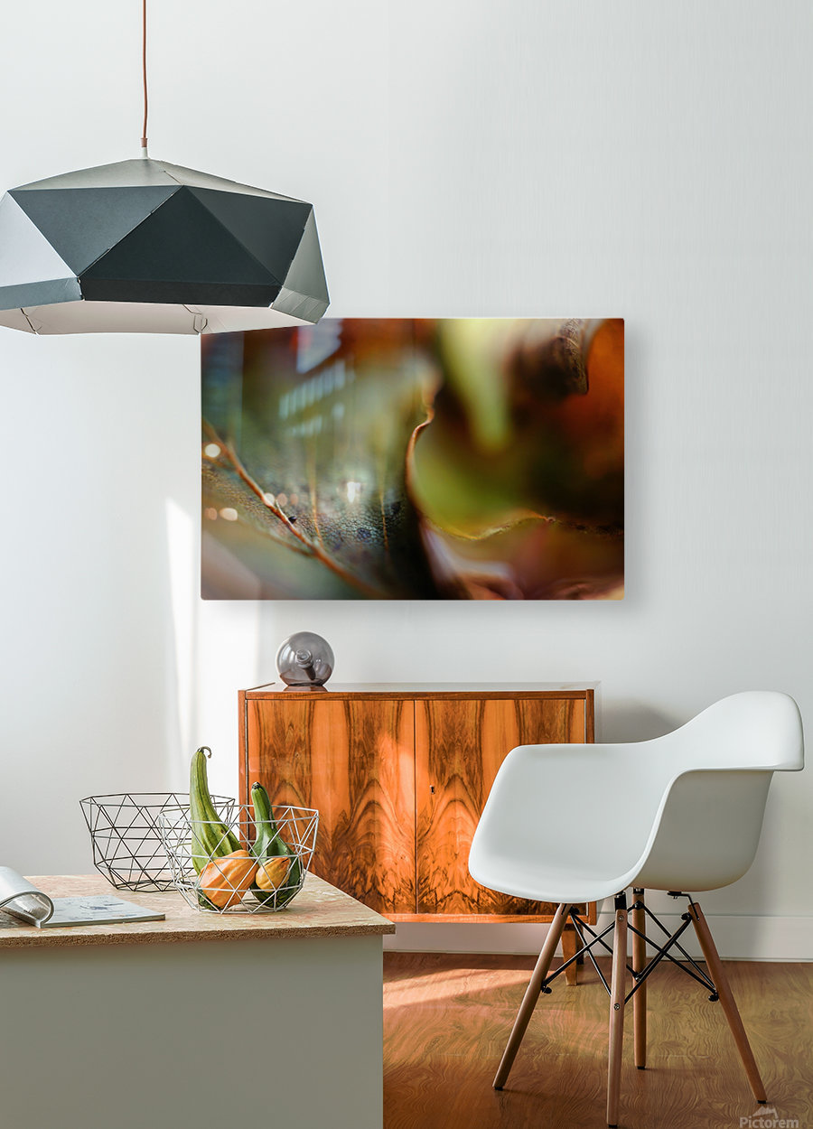 Abstract Mystic and Colourful Leaf 03  HD Metal print with Floating Frame on Back