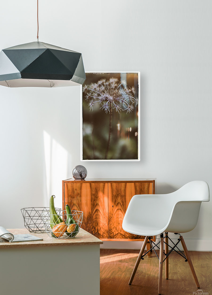 Colors of Fall  HD Metal print with Floating Frame on Back