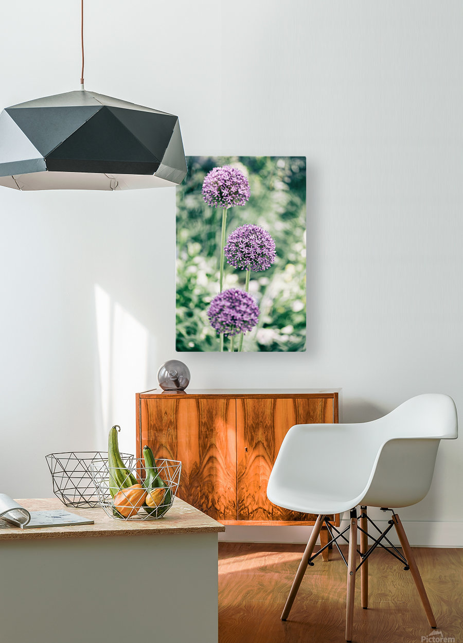 Three Purple Flowers  HD Metal print with Floating Frame on Back