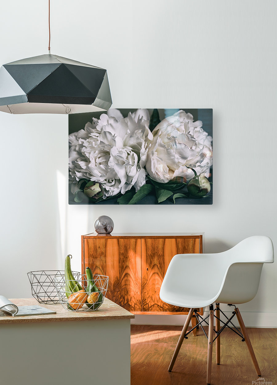 Two Peonies  HD Metal print with Floating Frame on Back
