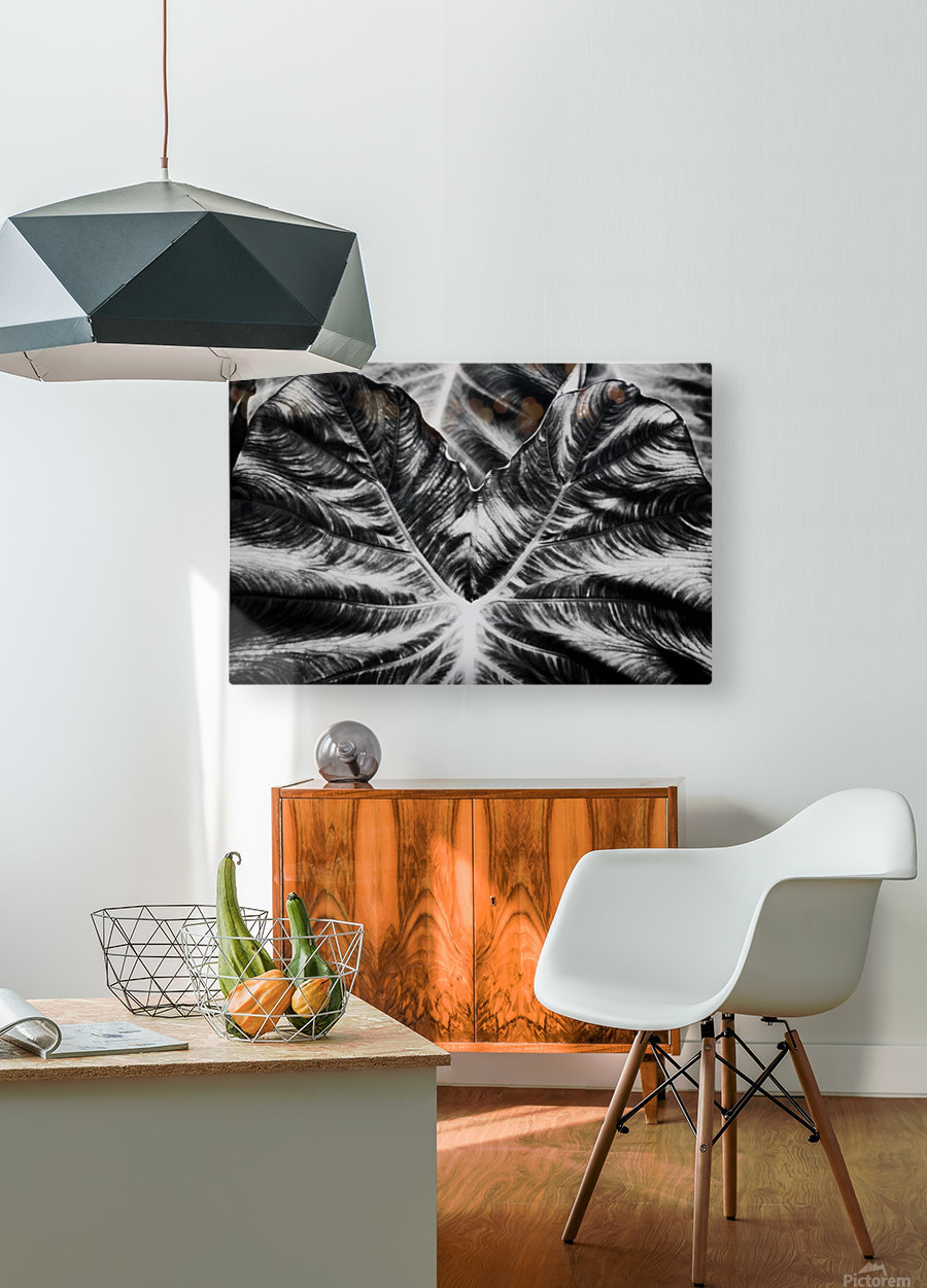Boldness of Nature  HD Metal print with Floating Frame on Back