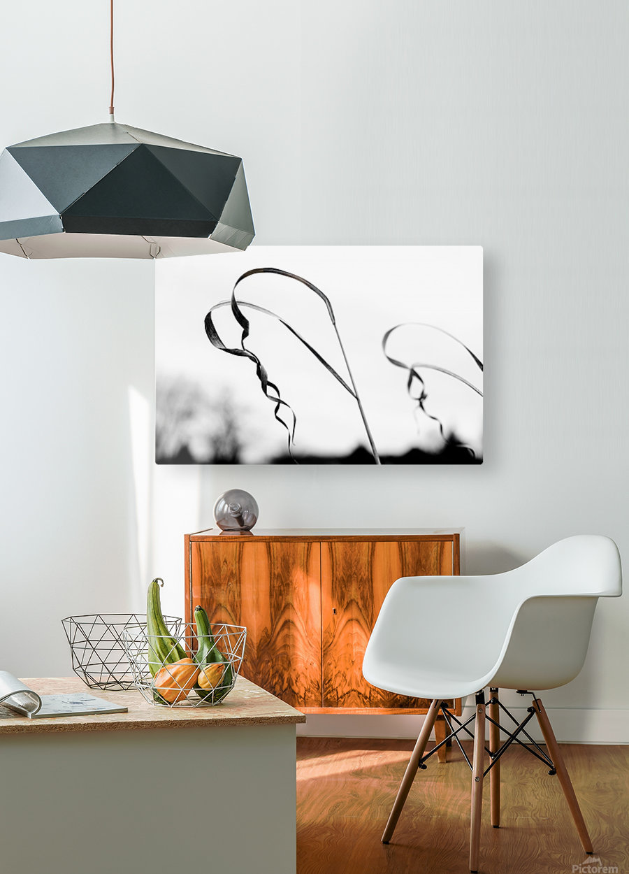 Thin Lines  HD Metal print with Floating Frame on Back