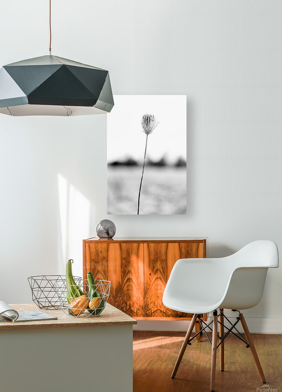 Just One  HD Metal print with Floating Frame on Back