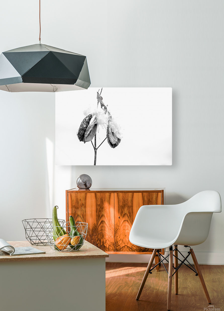 End of the season  HD Metal print with Floating Frame on Back