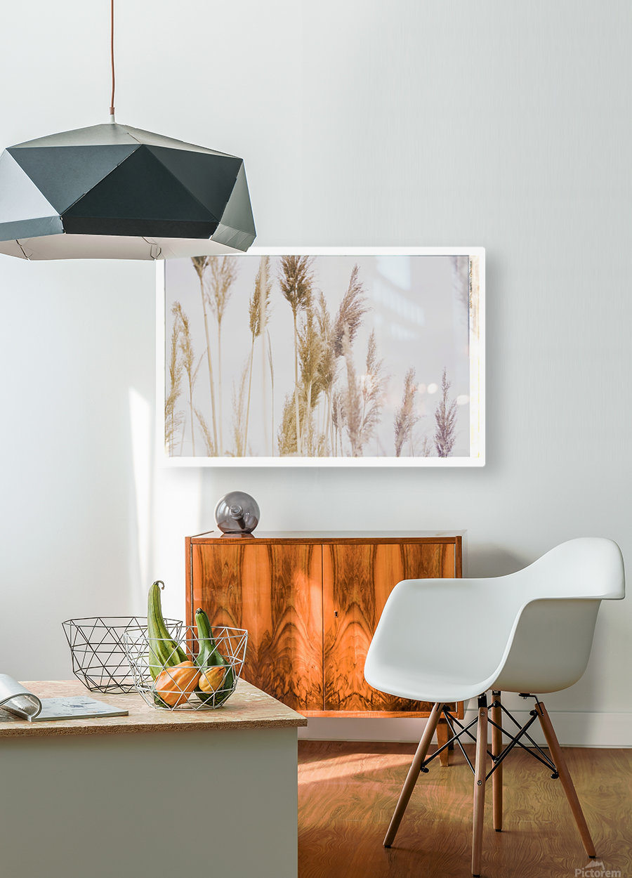Tall Grass  HD Metal print with Floating Frame on Back
