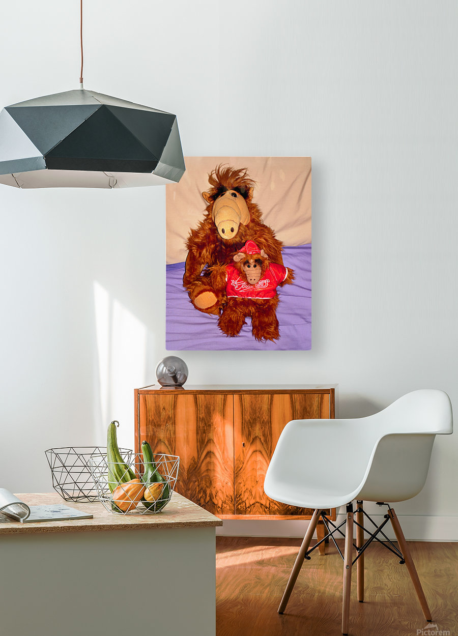 Alf And Alf Junior  HD Metal print with Floating Frame on Back