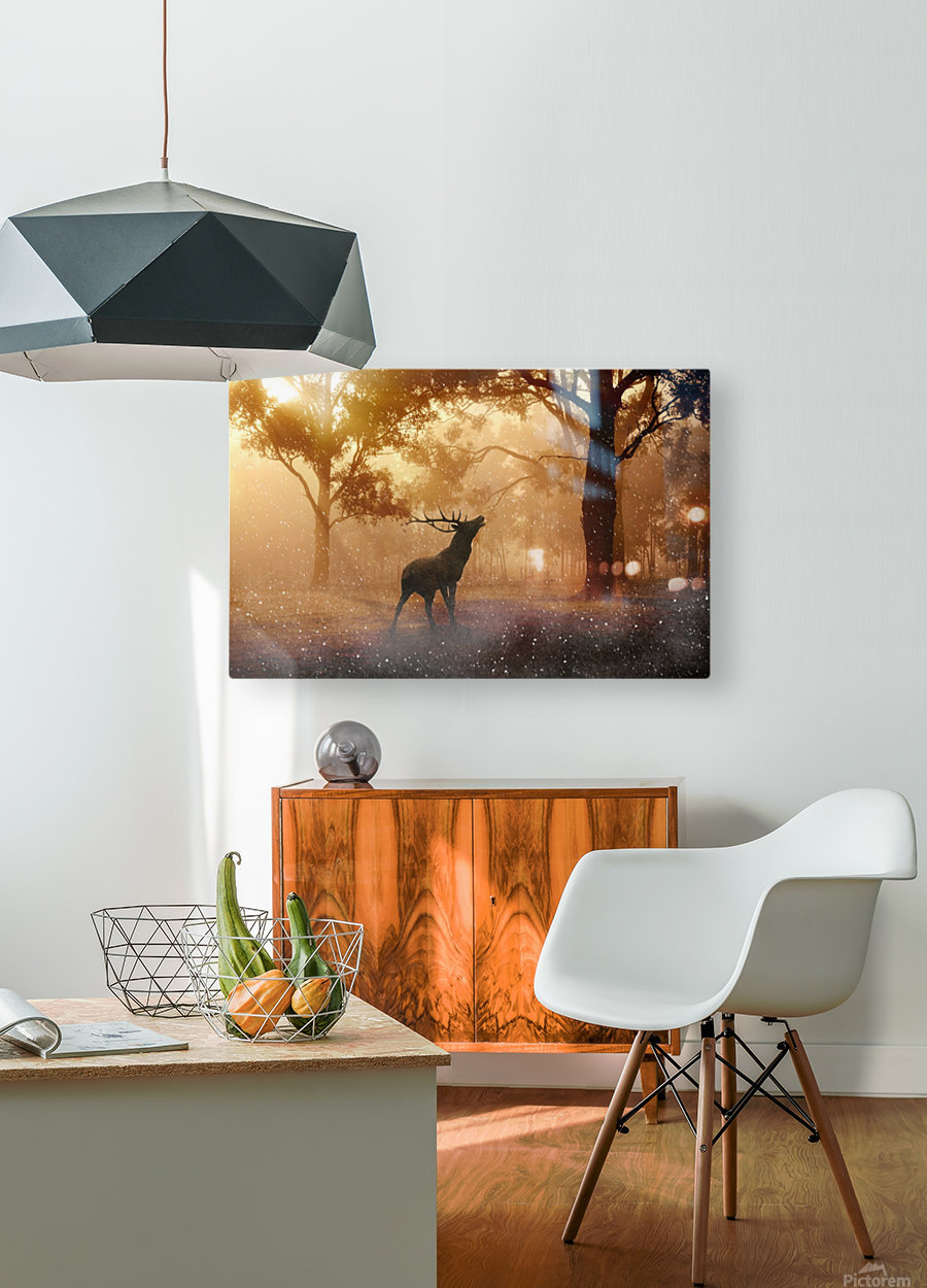 hirsch wild antler nature forest  HD Metal print with Floating Frame on Back