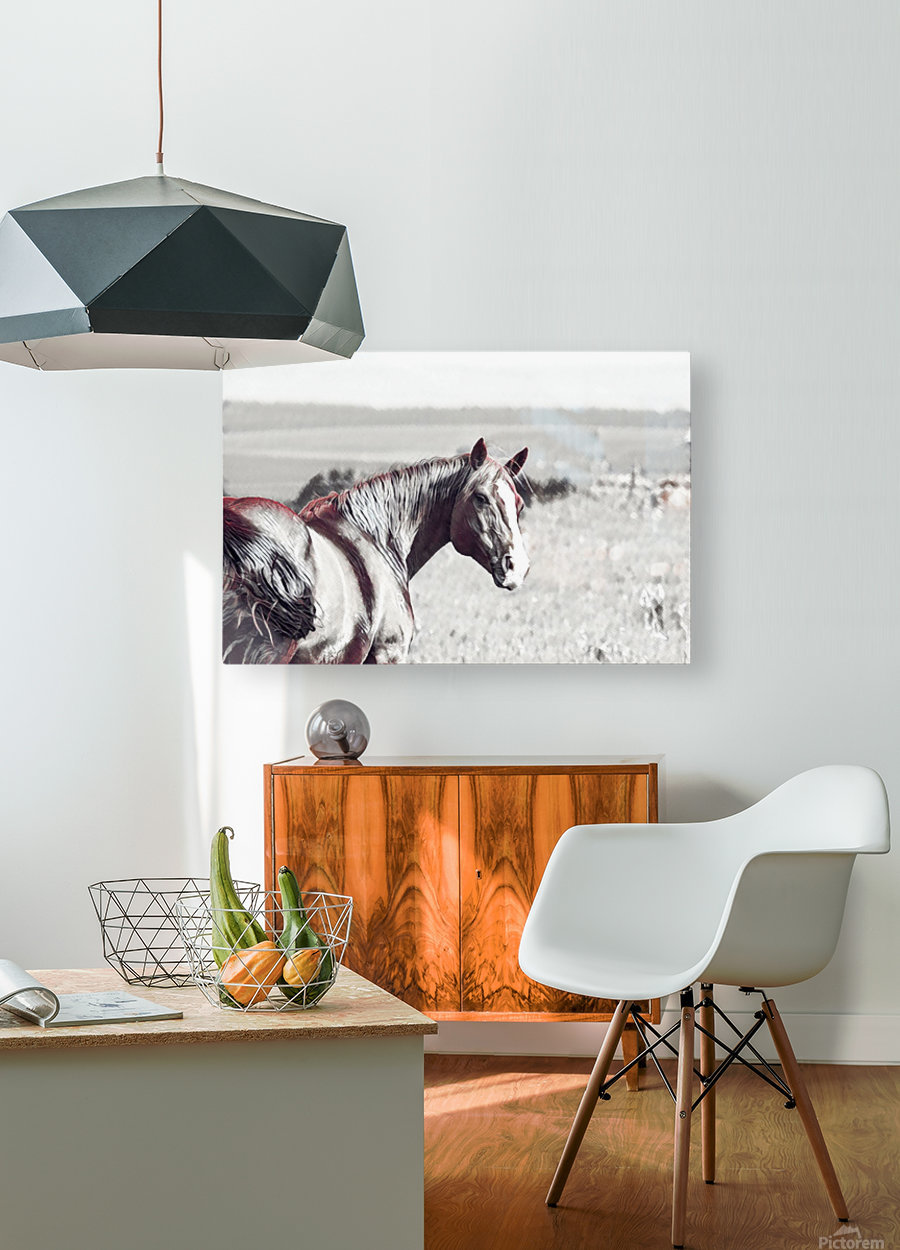 fields of freedom  HD Metal print with Floating Frame on Back