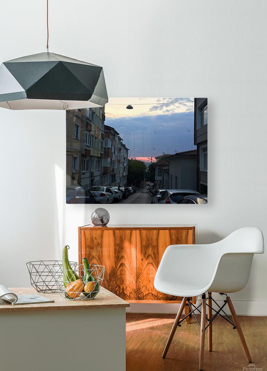 IMG_7086  Impression métal HD avec cadre flottant sur le dos