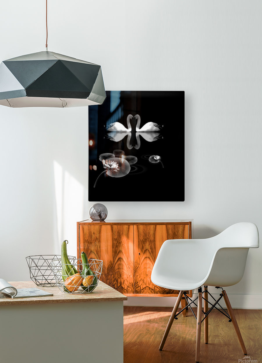 Chinese Concept 21A  HD Metal print with Floating Frame on Back