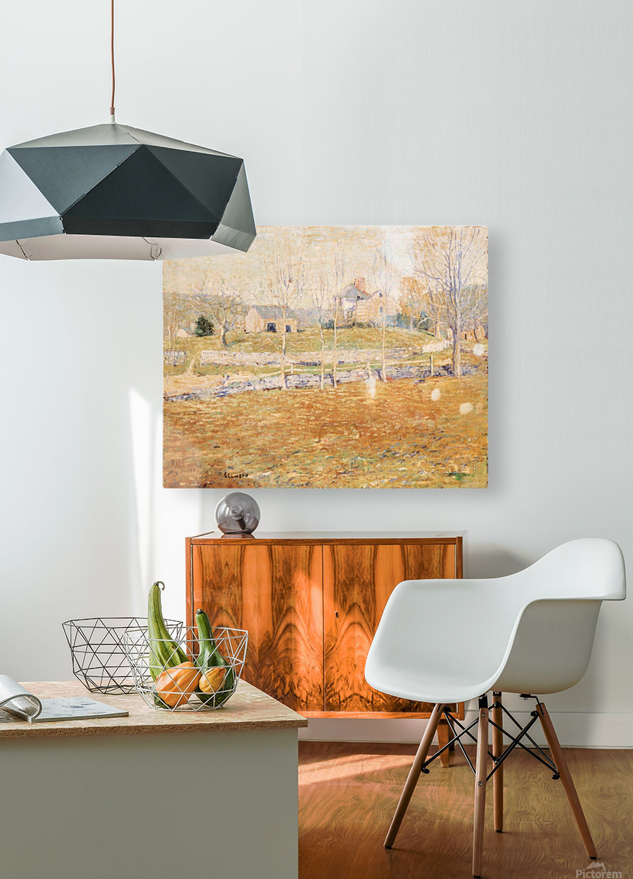 An abandoned farm  HD Metal print with Floating Frame on Back