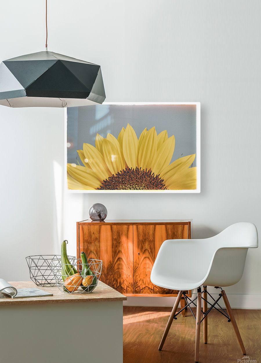 Sun Is Shining  HD Metal print with Floating Frame on Back